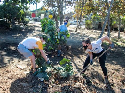 UCLA Law members participate in the Public Service Challenge